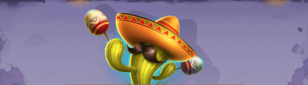 5 gringos kokemuksia meksikolaiseen teemaan